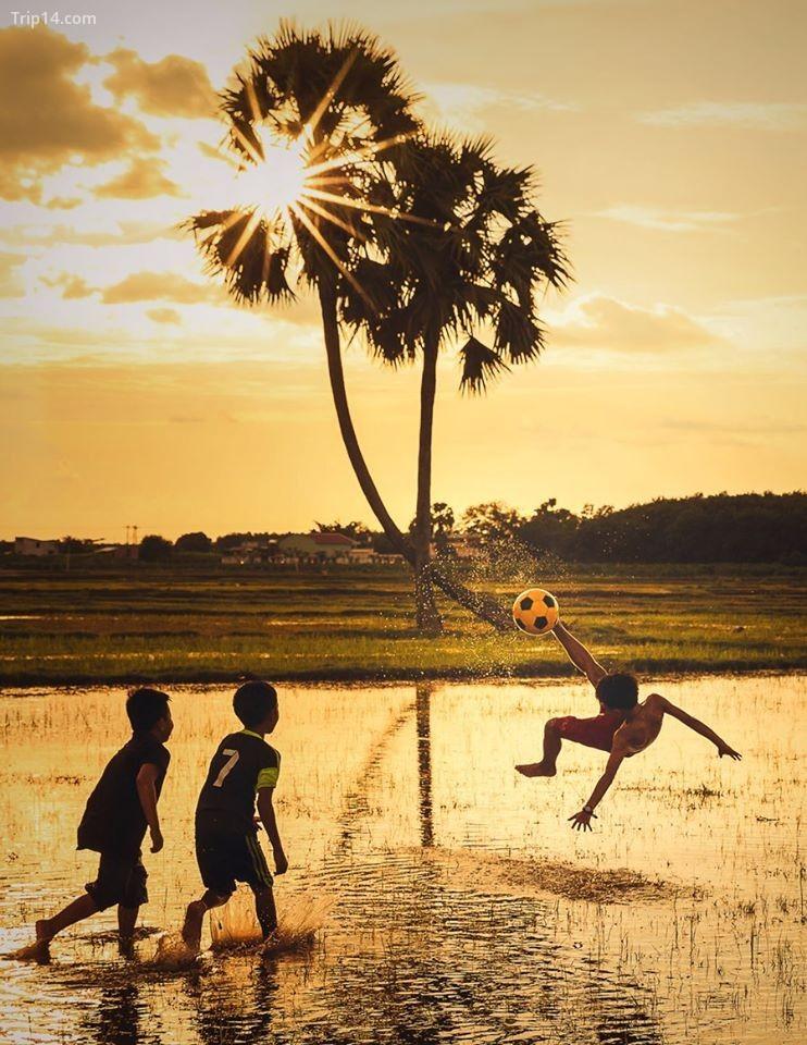 """Bức ảnh """"Bóng đá trong mơ"""" được chụp tại Tây Ninh ghi lại cảnh trẻ em tận dụng đồng lúa đã thu hoạch làm sân bóng đá"""